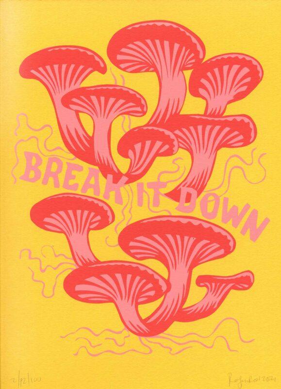 Break it Down (2nd edition)
