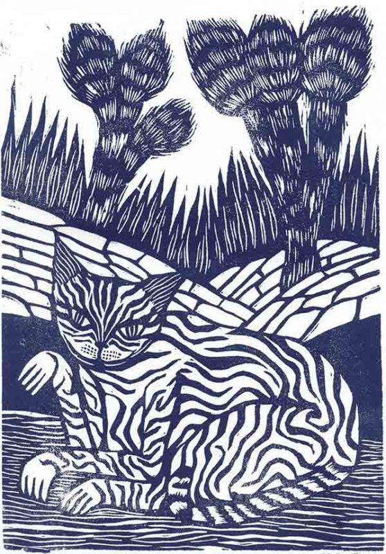 Joshua Cat