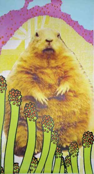 Goodbye Groundhog