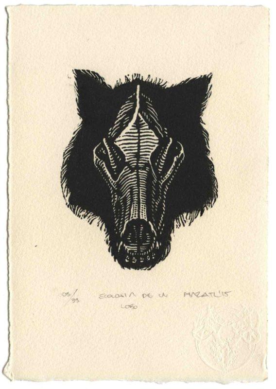 Ecología de un Lobo