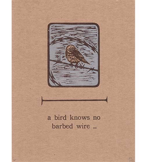 A Bird Knows No Barbed Wire