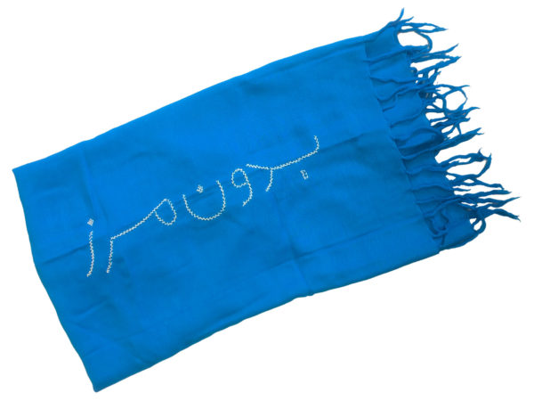 Borderfree Blue Scarf
