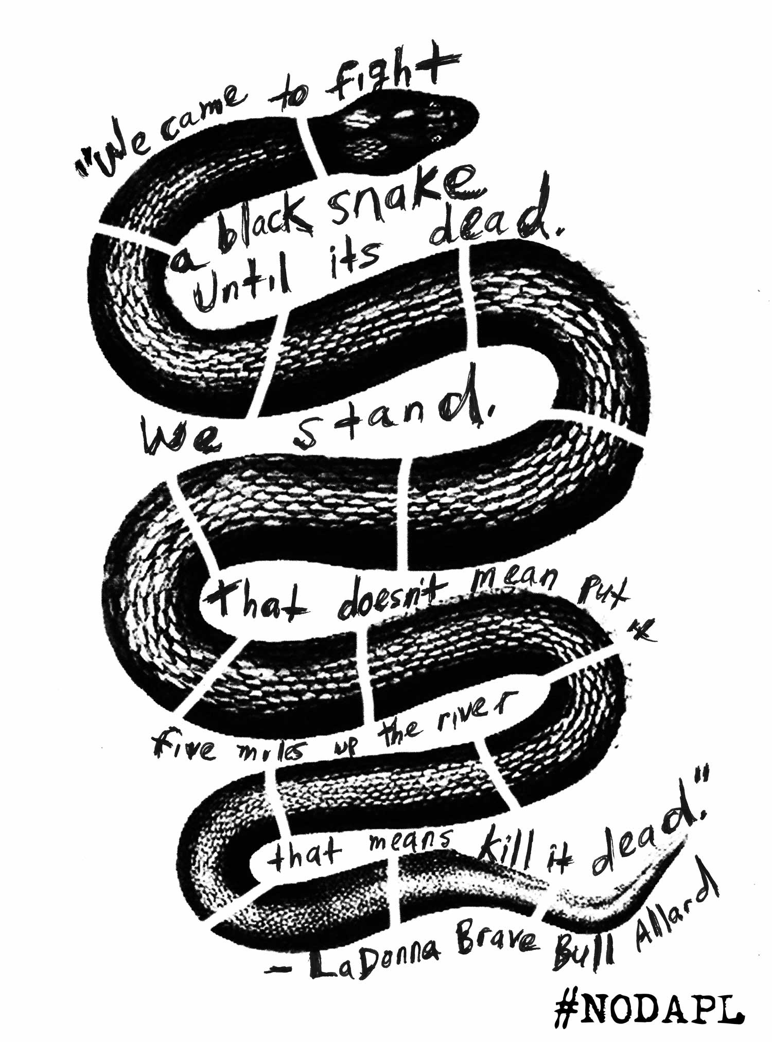 We Came to Fight A Black Snake graphic by Nicolas Lampert