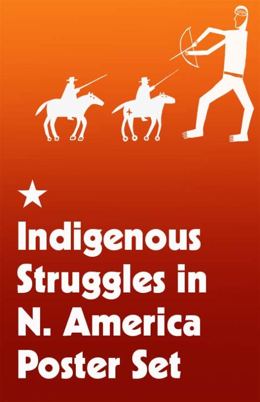 Indigenous Struggles in the N. America Poster Set