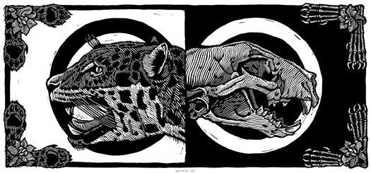 Extinción 8
