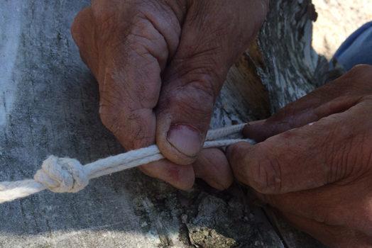 Niwiigwaasike (I remove birch bark from the tree)