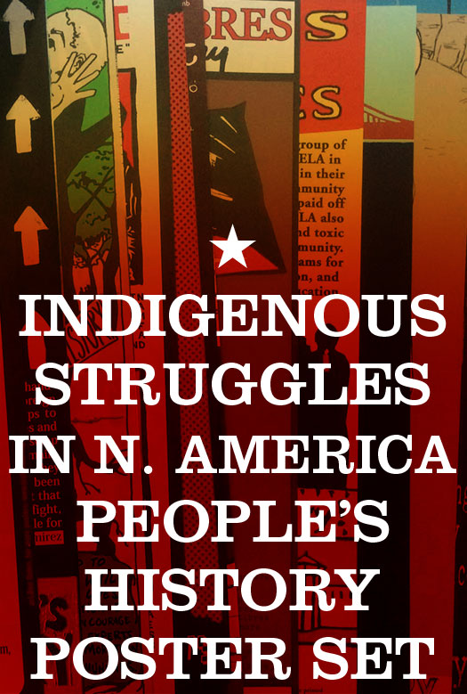 Indigenous Struggles in the North America Poster Pack