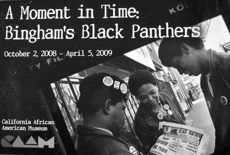 A Moment in Time: Bingham's Black Panthers