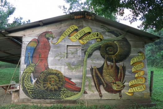 Zapatista Murals