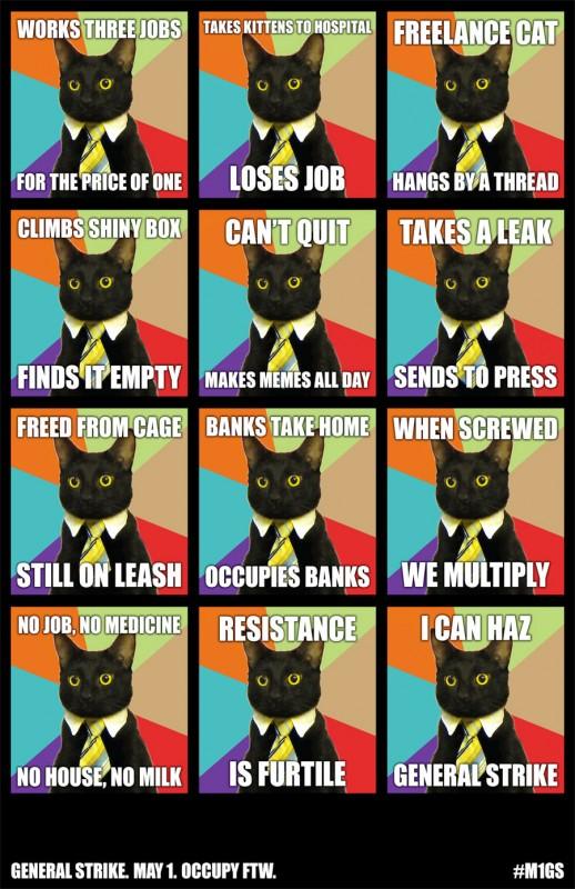 May Day Cat Meme
