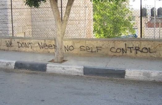 In Palestine pt.4