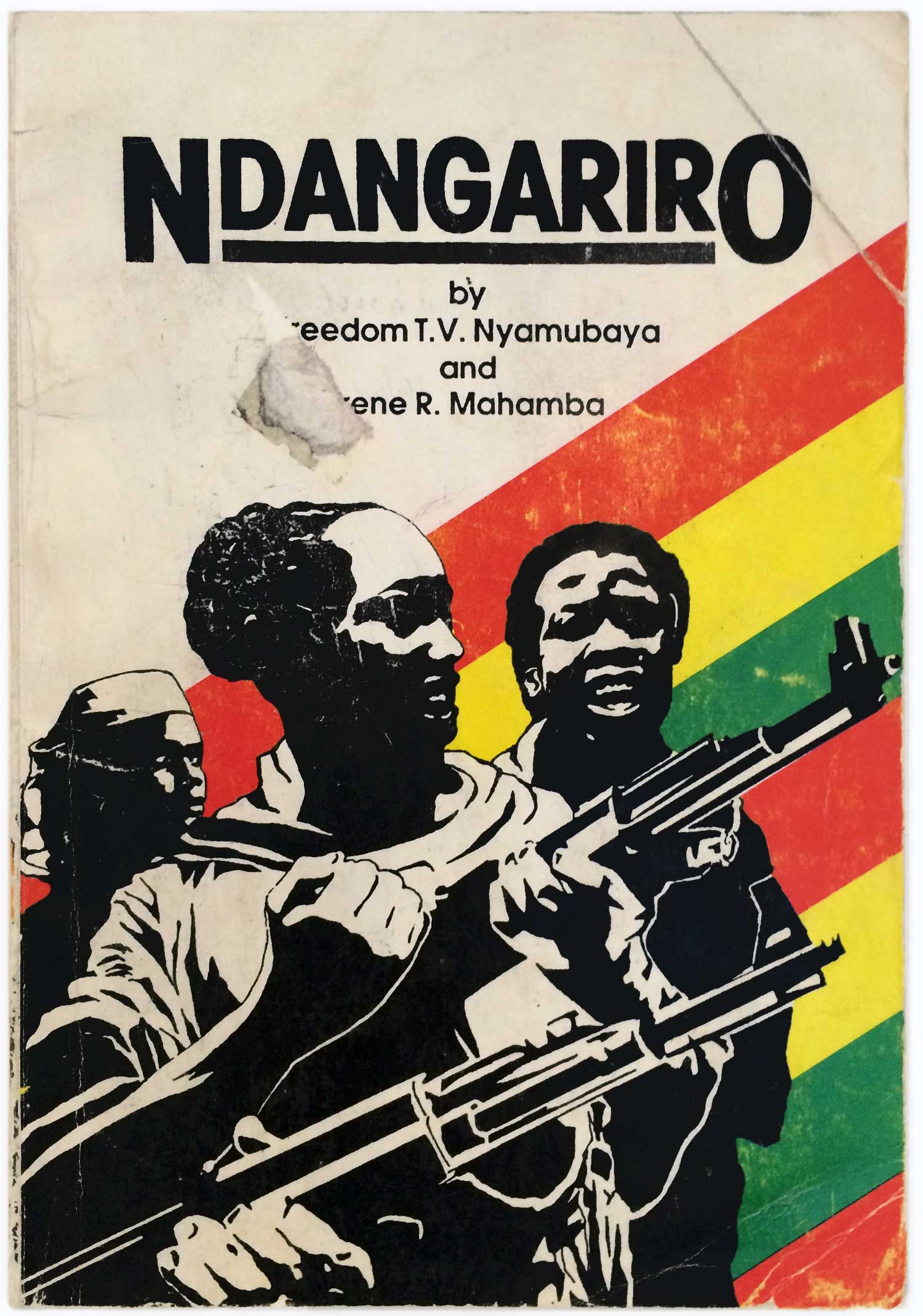 Nyamubaya_Ndangariro_ZIMFEP