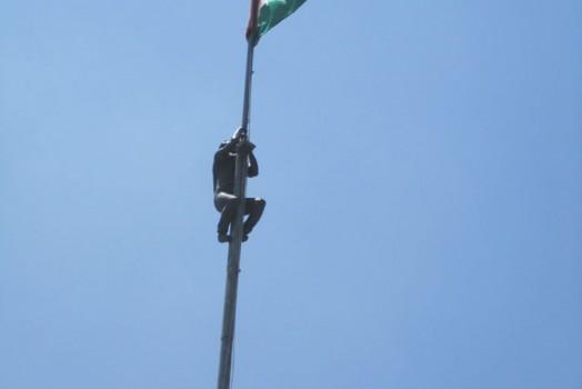 In Palestine pt.19