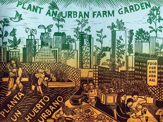 Plant an Urban Farm Garden/Planta un Huerto Urbano