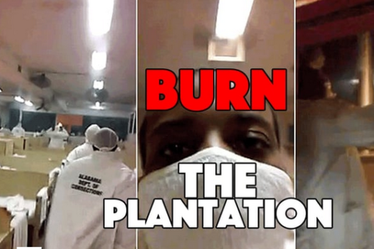 Burn the plantations from Submedia.tv