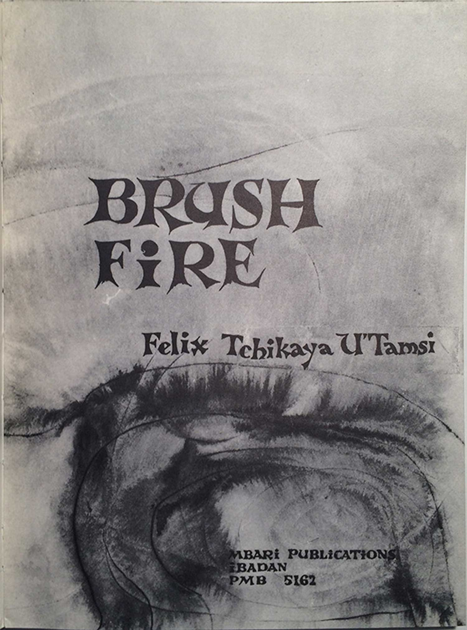 UTamsi_BrushFire_Mbari_inside01