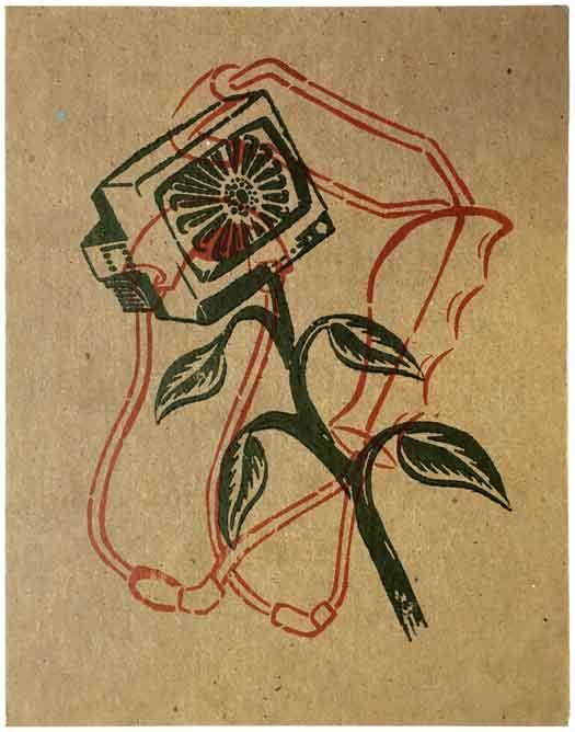 Slingshot/Weed Postcard