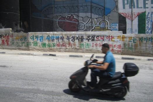 In Palestine pt.10