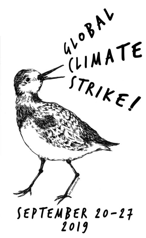 Climate Strike Bird