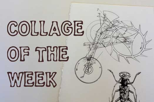collage of the week (52)