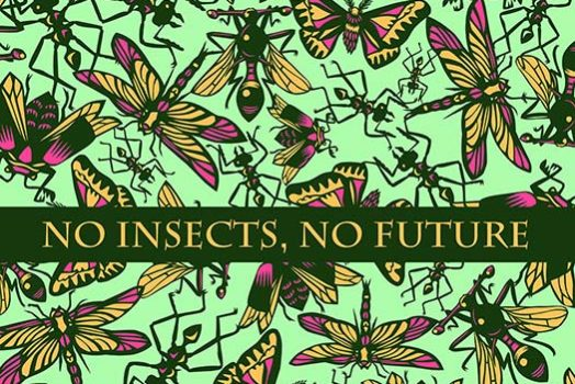 No Insects means No Future