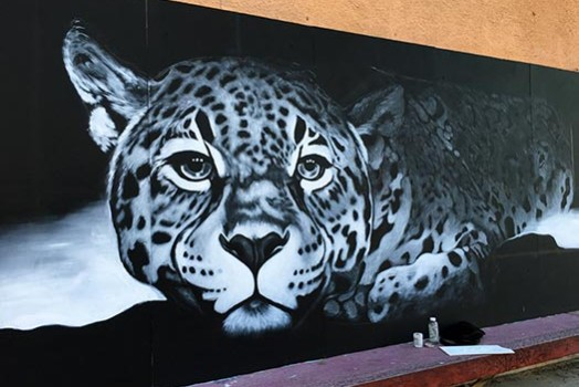 Jaguar Mural in Tucson: progress!