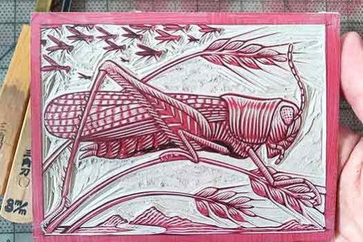 Rocky Mountain Locust print process