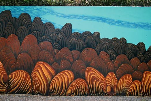 Endangered Species Mural #8: Freshwater Mussels of Tennessee