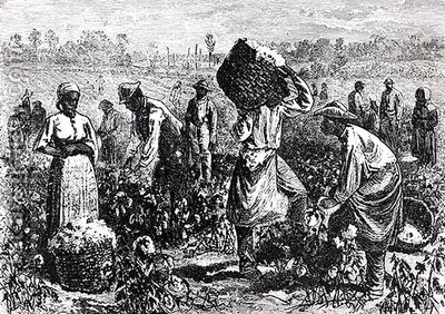 Slaves-Picking-Cotton-On-A-Plantation.jpg