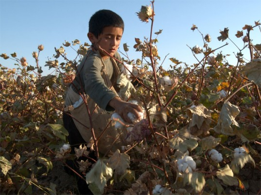 uzbekistan-child-labor-cotton-1-537x402.jpg