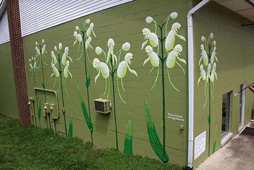 Endangered Species Murals #9: White Fringeless Orchid