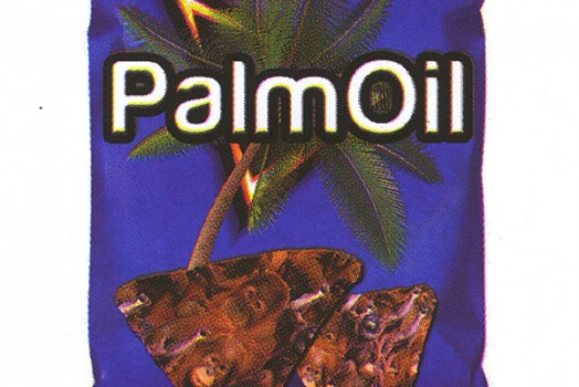 Rad Post-Teen Print of the Week: Palm Oil