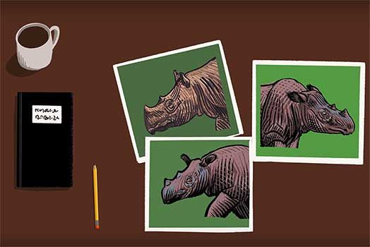 The Sumatran Rhino: Hard to Save